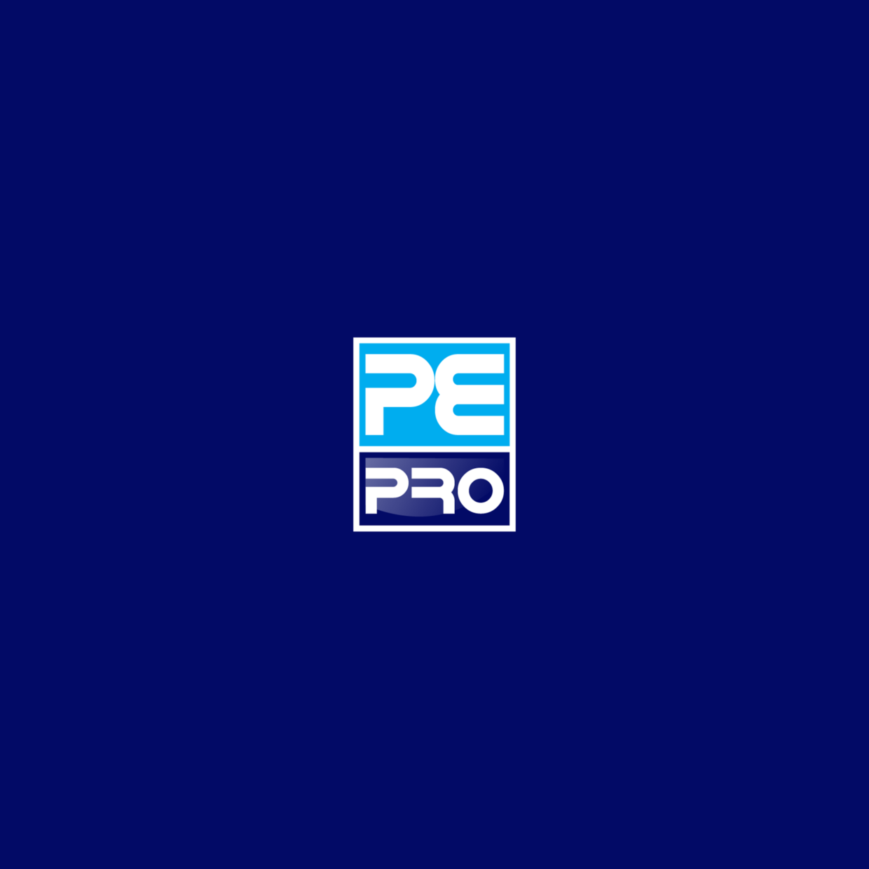 PE Pro splash screen